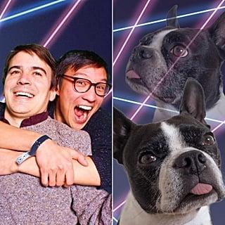 حساب You-Dog-Now على تويتر