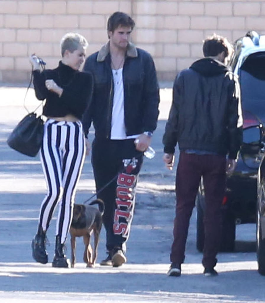 Miley Cyrus and Liam Hemsworth brought their dog along for a visit with family in Palm Springs in December 2012.
