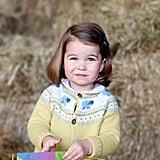Princess Charlotte's Second Birthday Portrait
