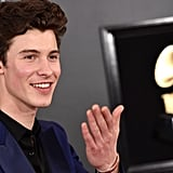 Pictured: Shawn Mendes