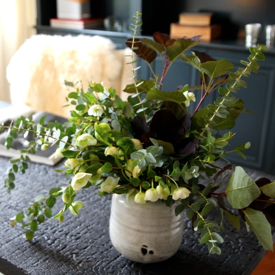 Houseplants That Are Good For Your Health