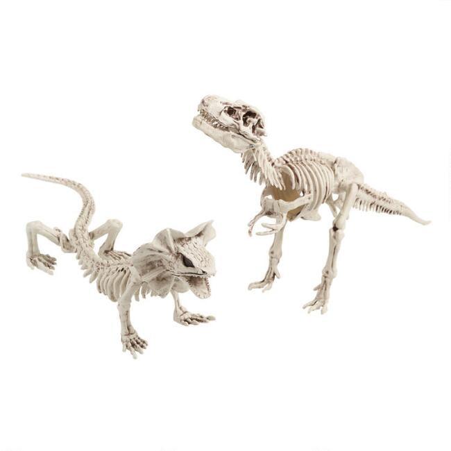 Dinosaur Skeleton Decor Set of Two