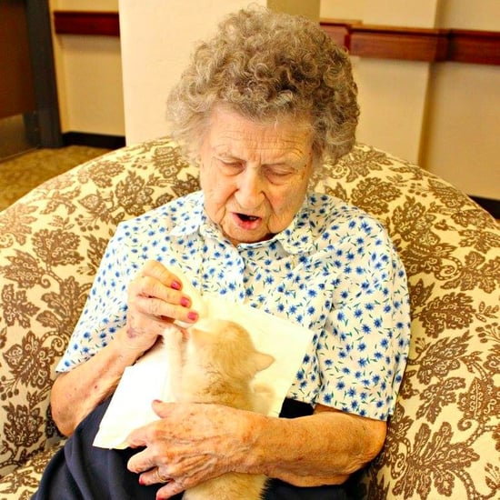 Animal Shelter Partners With Retirement Home