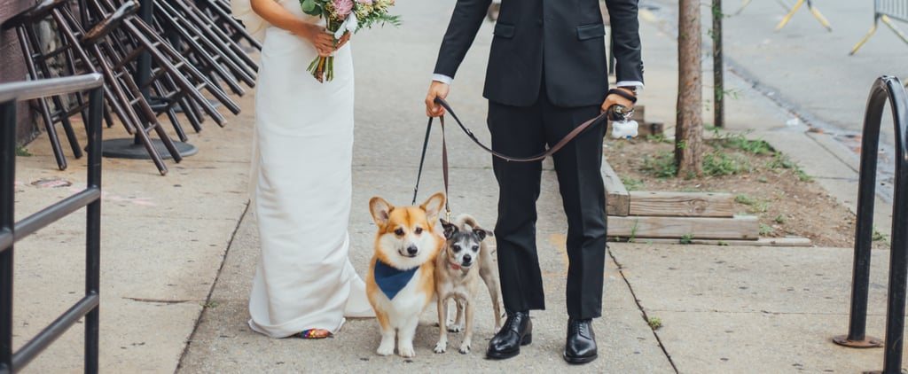 Elegant Brooklyn Wedding