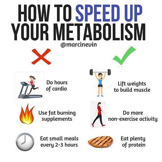 How to Speed Up My Metabolism
