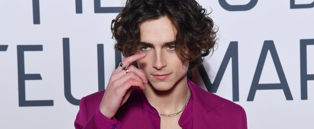 Timothee Chalamet's Raspberry-Colored Suit on the Red Carpet