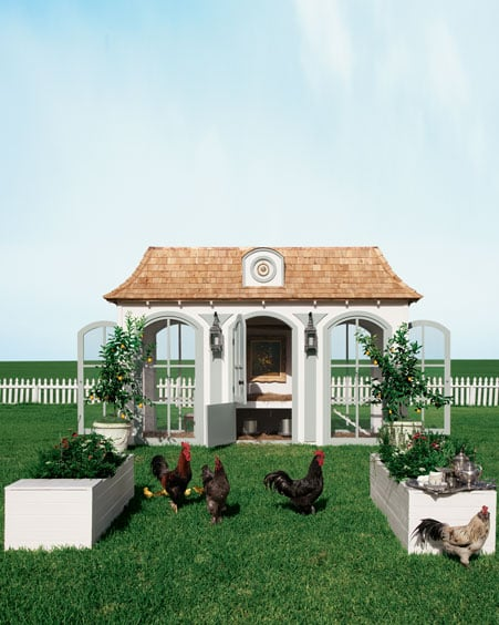 Doesn't everyone want a  Heritage Hen Mini Farm ($100,000)? This crazy gift comes with  three to 10 heritage-breed hens carefully selected by hen farm expert Svetlana Simon and a playground that includes the most luxe accommodations for your precious hens . . .