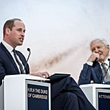 Prince William Talks With David Attenborough January 2019