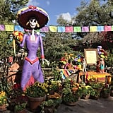 There are flowers every which way at Disneyland Park's Frontierland.