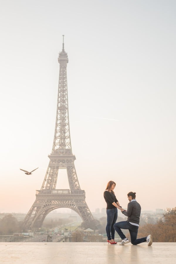Image result for proposal photo