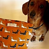 Poppy Treffry Darling Dachshund — Big Useful Purse