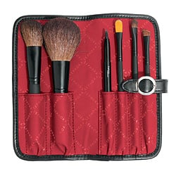Giveaway of the Day! Sephora Two Tone Portfolio Brush Set