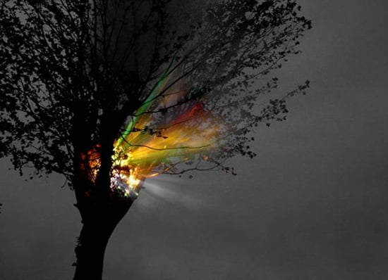 Midday Muse: Light in the Dark