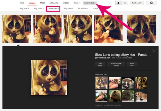 How to GIF Search