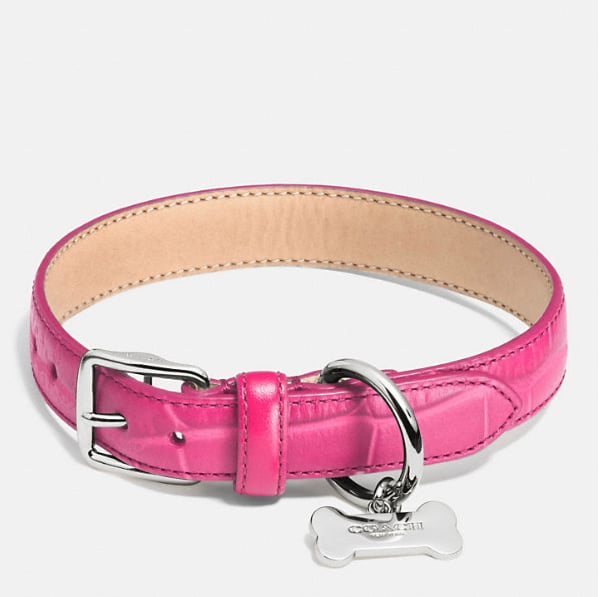 For the traditional pet who still wants to stand out from the crowd at the dog park, this bright Coach leather collar ($88) adds just a pop of color.