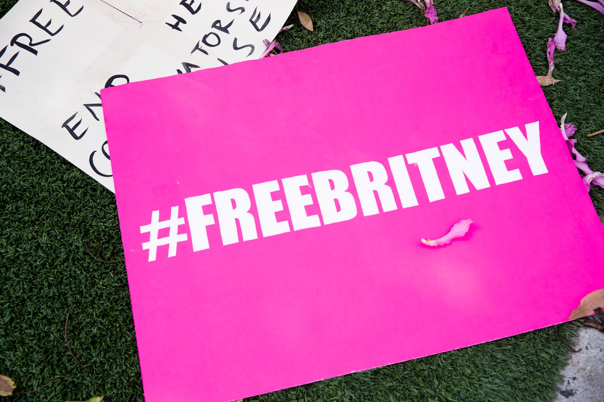 WEST HOLLYWOOD, CALIFORNIA - SEPTEMBER 15: Signs in support of Britney Spears are seen during a #FreeBritney protest outside of the Tri Star Sports & Entertainment Group offices on September 15, 2020 in West Hollywood, California. (Photo by Rich Fury/Getty Images)