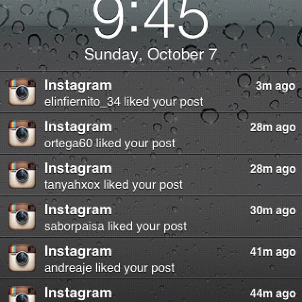 You Instagram at night so you can wake up to this. . .