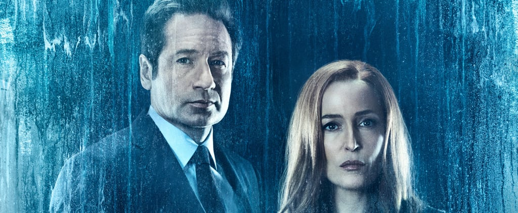 Why Is Gillian Anderson Leaving X-Files?