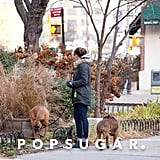 Jessica Hangs With Her Dogs in NYC While Justin Balls on His NJ Set
