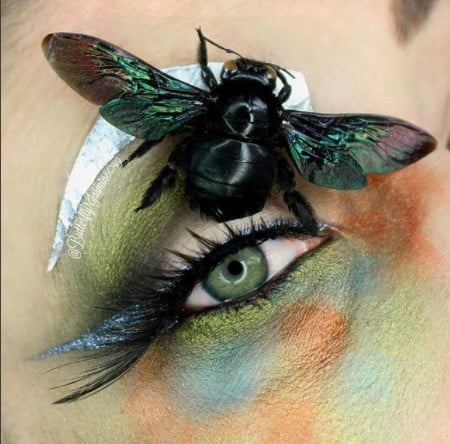 Makeup Artist Who Uses Bugs in Eye Shadow