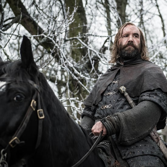 When Is the Last Time Arya Saw the Hound on Game of Thrones?