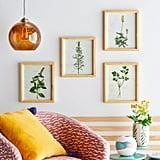 Herb Wood Frame