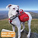 Baxter Dog Backpack ($50)
