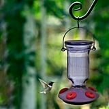 Perky-Pet Lavender Field Top-Fill Decorative Glass Hummingbird Feeder