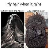 99 Beauty Memes That Will Make You LOL