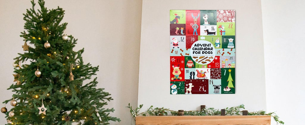 Sam's Club Advent Calendars For Dogs 2020