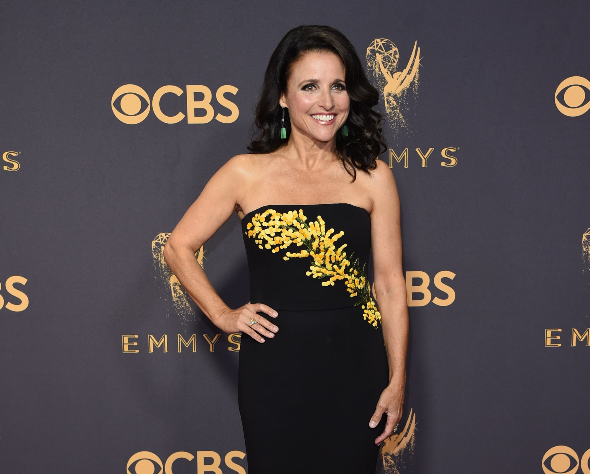 Instagram Julia Louis-Dreyfus nude (42 photo), Sexy, Leaked, Selfie, see through 2020