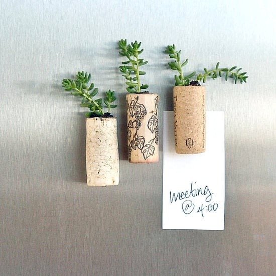 Cork Planter Magnets