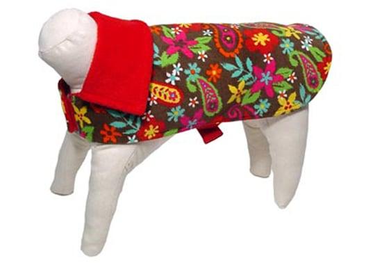 Trend Setters: Paisley Pets
