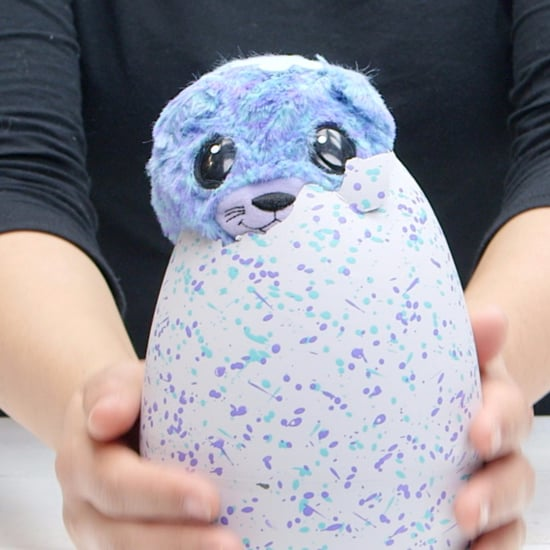 New Hatchimals