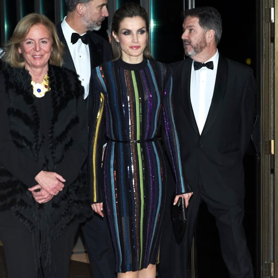 Queen Letizia's Nina Ricci Dress December 2016