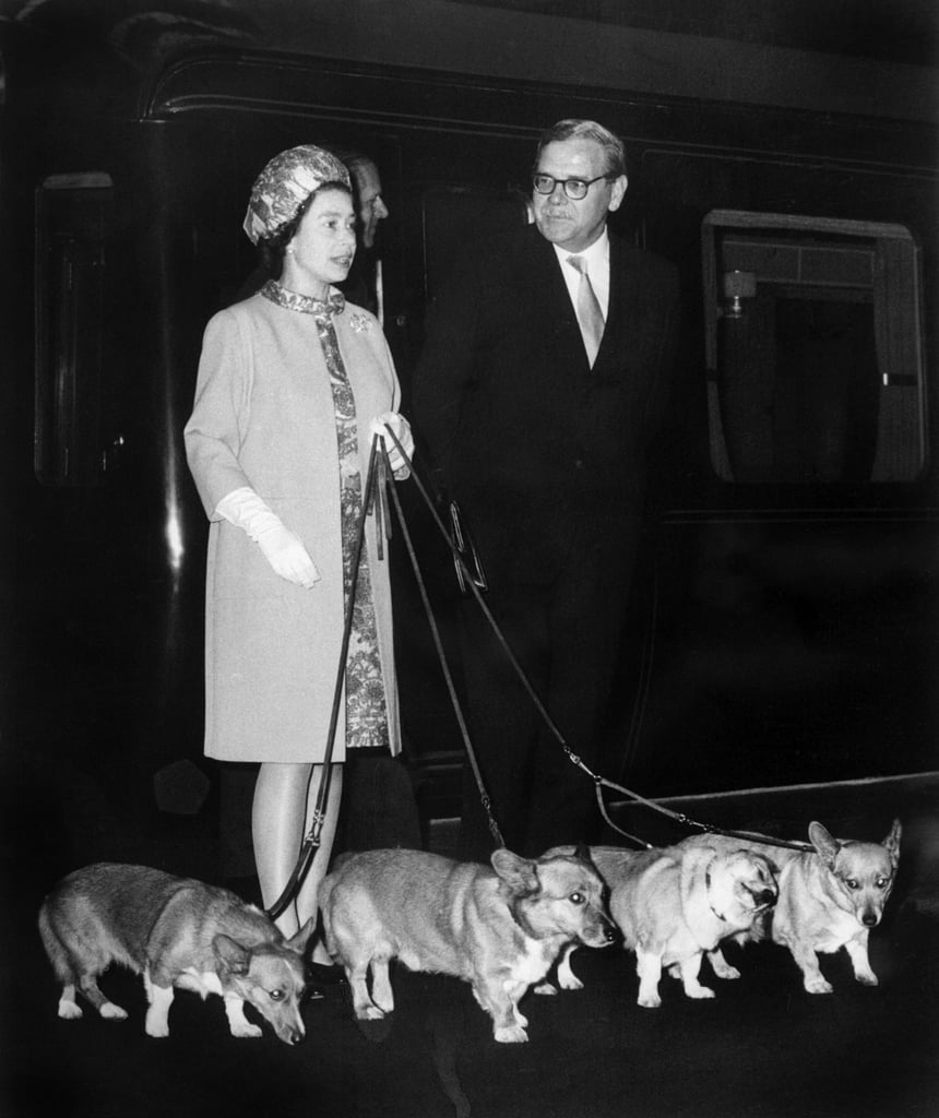 Just before welcoming the US astronauts of Apollo 11 who walked on the Moon, Queen Elizabeth II arrived at King's Cross station with four short-legged friends (and one longer-limbed companion) in 1969.