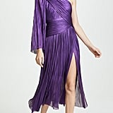 Maria Lucia Hohan Aqila Dress
