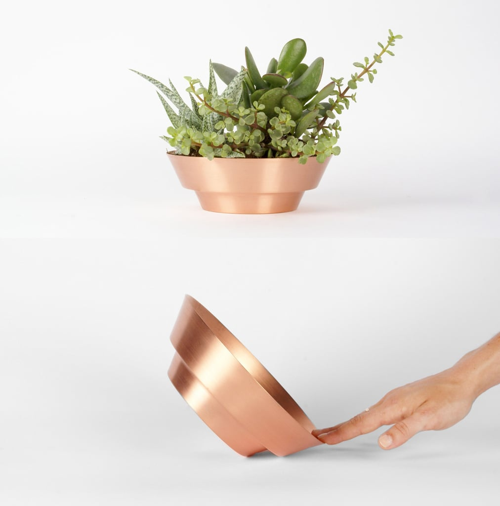 The compliments will flow when you have a Spun Bowl ($80) displayed in your home! Artfully cut from one piece of copper, this versatile decor item makes a dashing centerpiece and a unique succulent planter.  — Maggie Winterfeldt, assistant editor