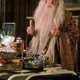 Dumbledore — Harry Potter Series