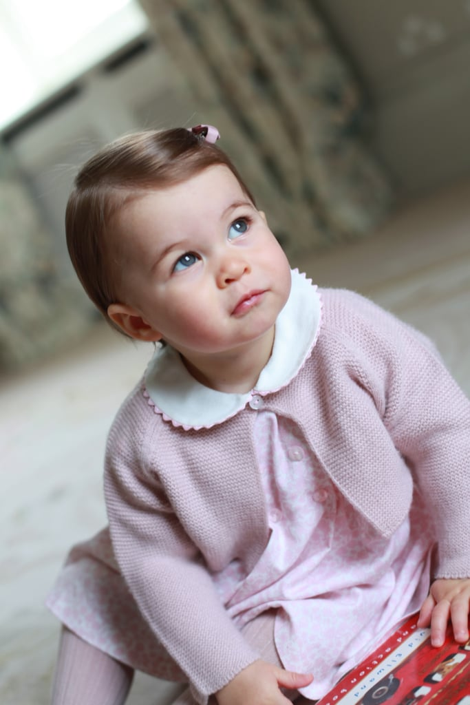 Best Pictures of Prince George and Princess Charlotte   2016