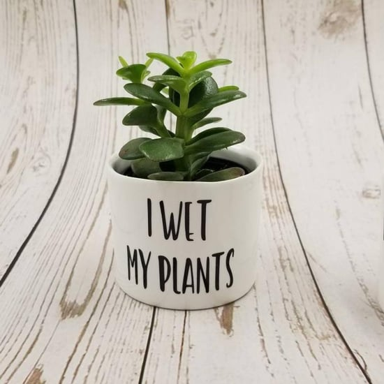 "Your Succulent Needs This ""I Wet My Plants"" Holder From Etsy"
