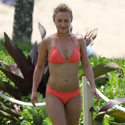 Hayden Panettiere Bikini Pictures With Boyfriend in Hawaii