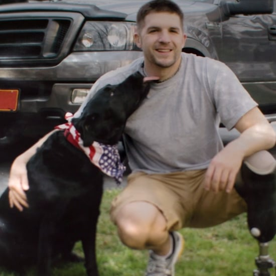 Service Dog For Soldier With PTSD