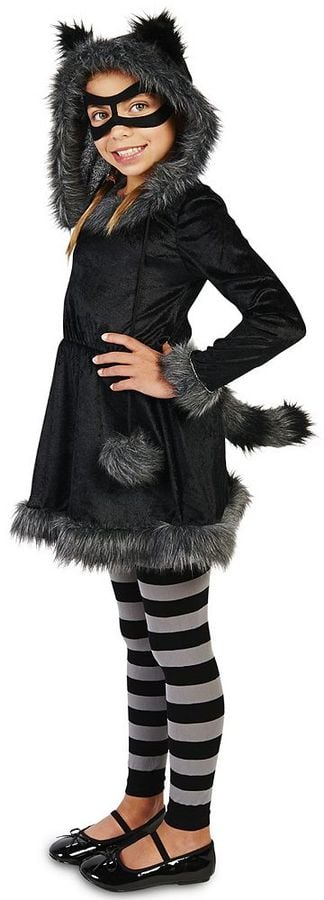 Raccoon Costume