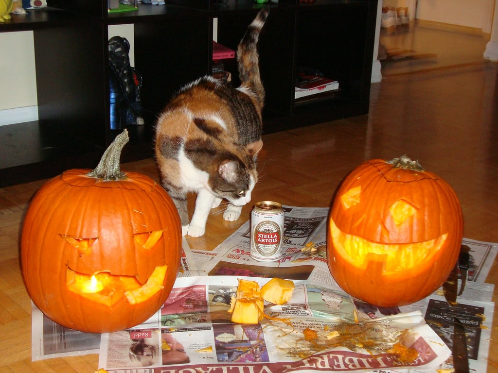 In life, sometimes you're faced with difficult choices: a freshly carved pumpkin or beer? Source: Flickr user veganbilly