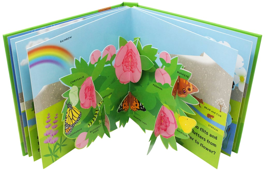 Spring: A Pop-Up Book