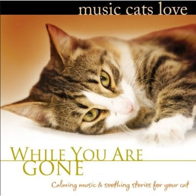 Music Cats Love