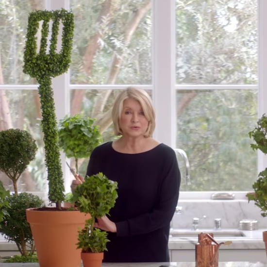 Martha Stewart and Snoop Dogg's T-Mobile Super Bowl Ad