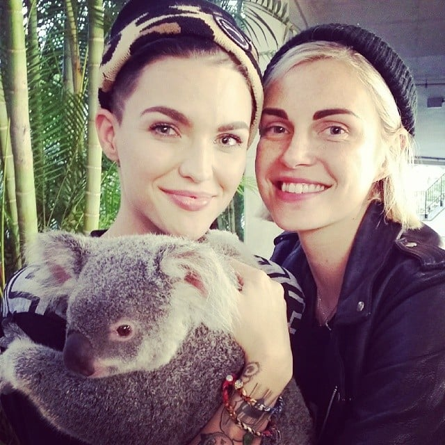 When They Cuddled With a Koala