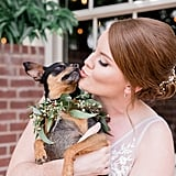 Dogs in Weddings